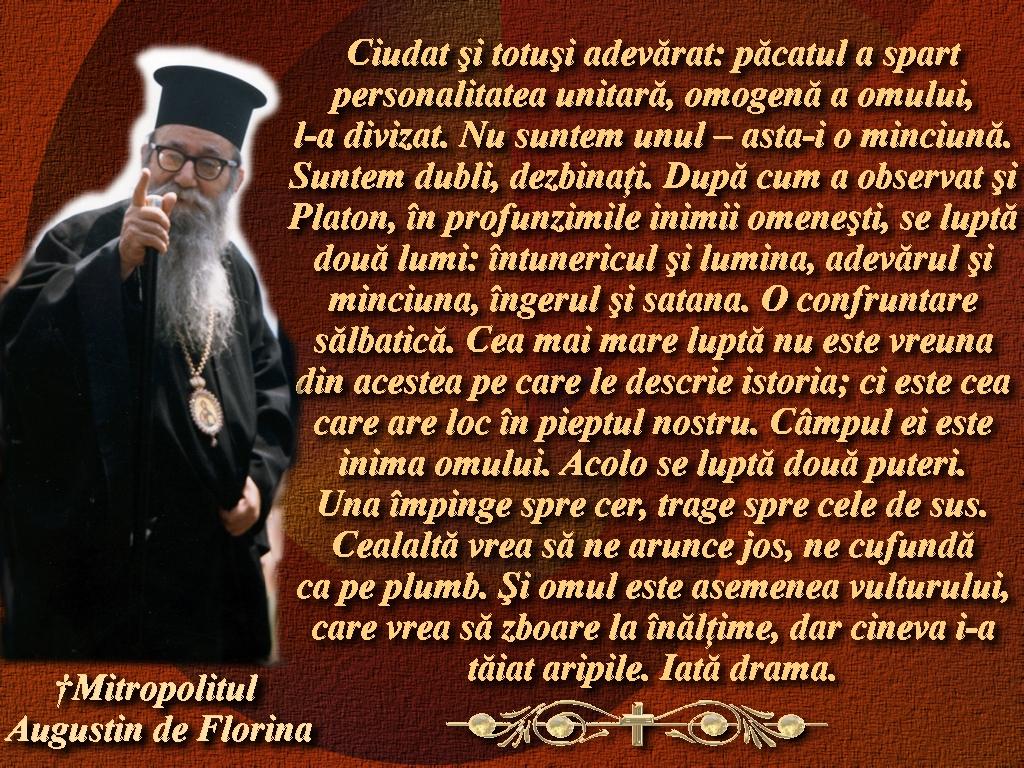 CitateMA_3